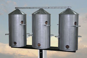 Grain silo Purple Martin Houses.